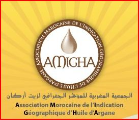 Site Web Officiel de AMIGHA